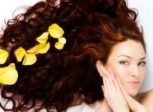 Hair-Loss-Facts