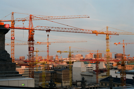 Interesting-Facts-About-Cranes