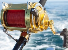 Fishing Reel, Fishing Line