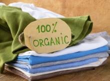 organic-clothing