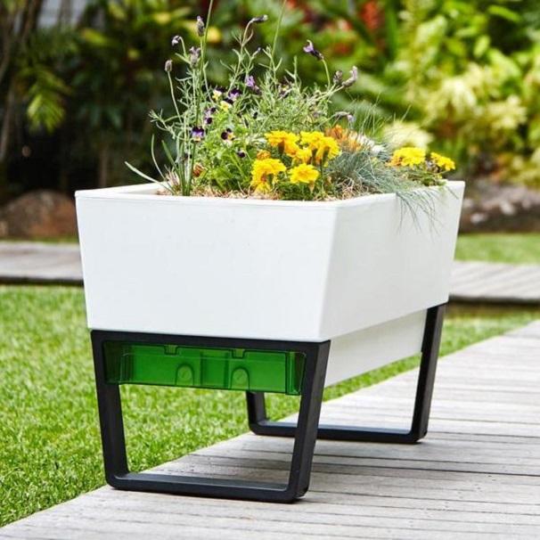 self watering urban garden