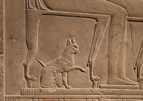 cat-in-ancient-egypt