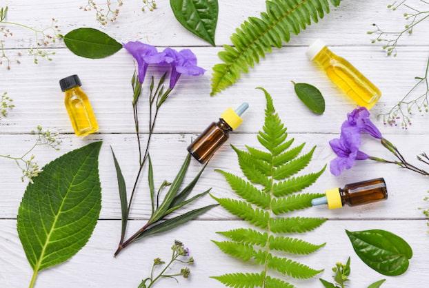 organic-essential-oils