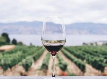 Vegan Red Wine